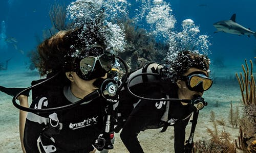 Discover Scuba Diving And Courses in Anjuna, Goa