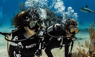 Discover Scuba Diving And Courses in Anjuna, Goa