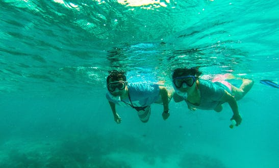 Enjoy Snorkeling And Experience Underwater World In Huraa, Maldives