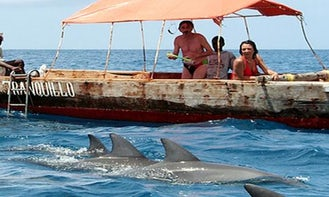 Experience Dolphin Tour in Zanzibar, Tanzania for 15 people