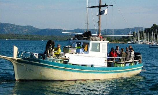 Full Day Dive Boat Trip For 12 Person In Murter, Croatia