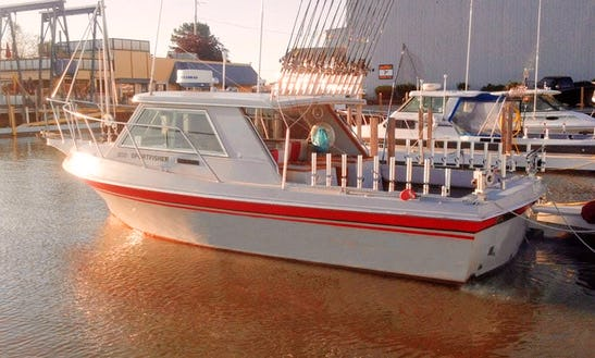 Exciting Fishing Trips On Lake Erie Aboard A 30' Fishing Vessel With Captain Dave In Ohio