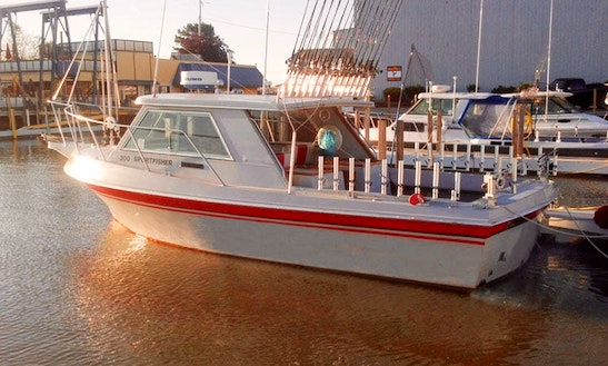Exciting Fishing Trips On Lake Erie Aboard A 30' Fishing Vessel With Captain Dave