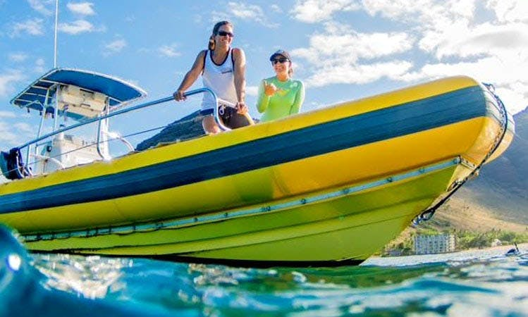 Private Whale Watching Charters 34' Rigid Inflatable Boat