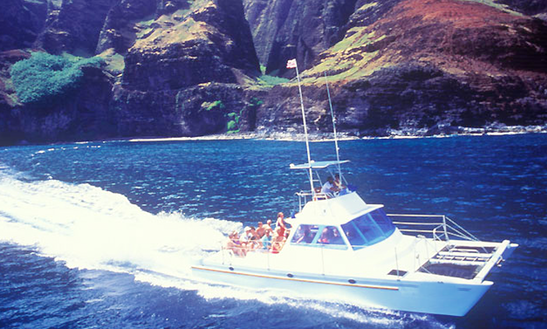 Enjoy 40 Ft Power Catamaran Charter In Eleele, Hawaii