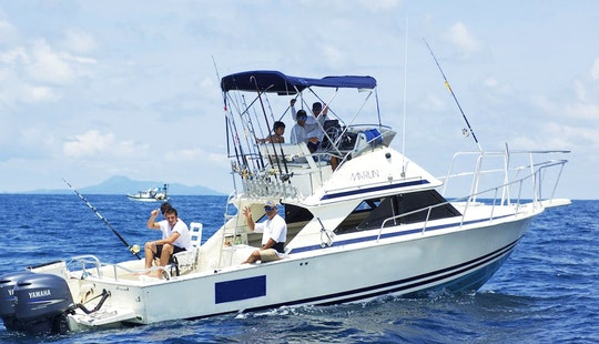 Fishing Charter On 30' Bertram Flybrige Yacht In Chicá, Panamá