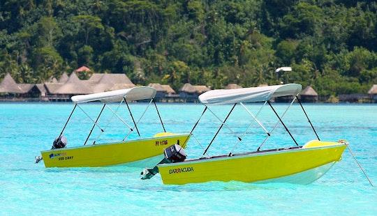 Quintrex 355 Dart 15hp Rental In Bora Bora