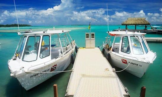 Dive Boat In Moorea