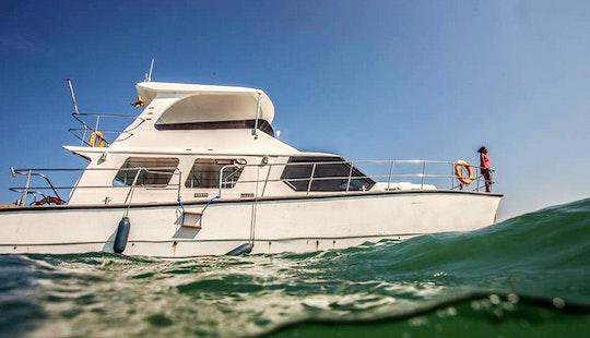 43' Power Catamaran Charter For 20 Person In Kalpitiya, Sri Lanka