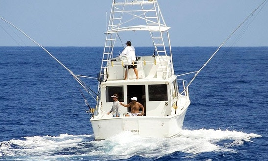 Motor Yacht Fishing Charter In Kailua-kona