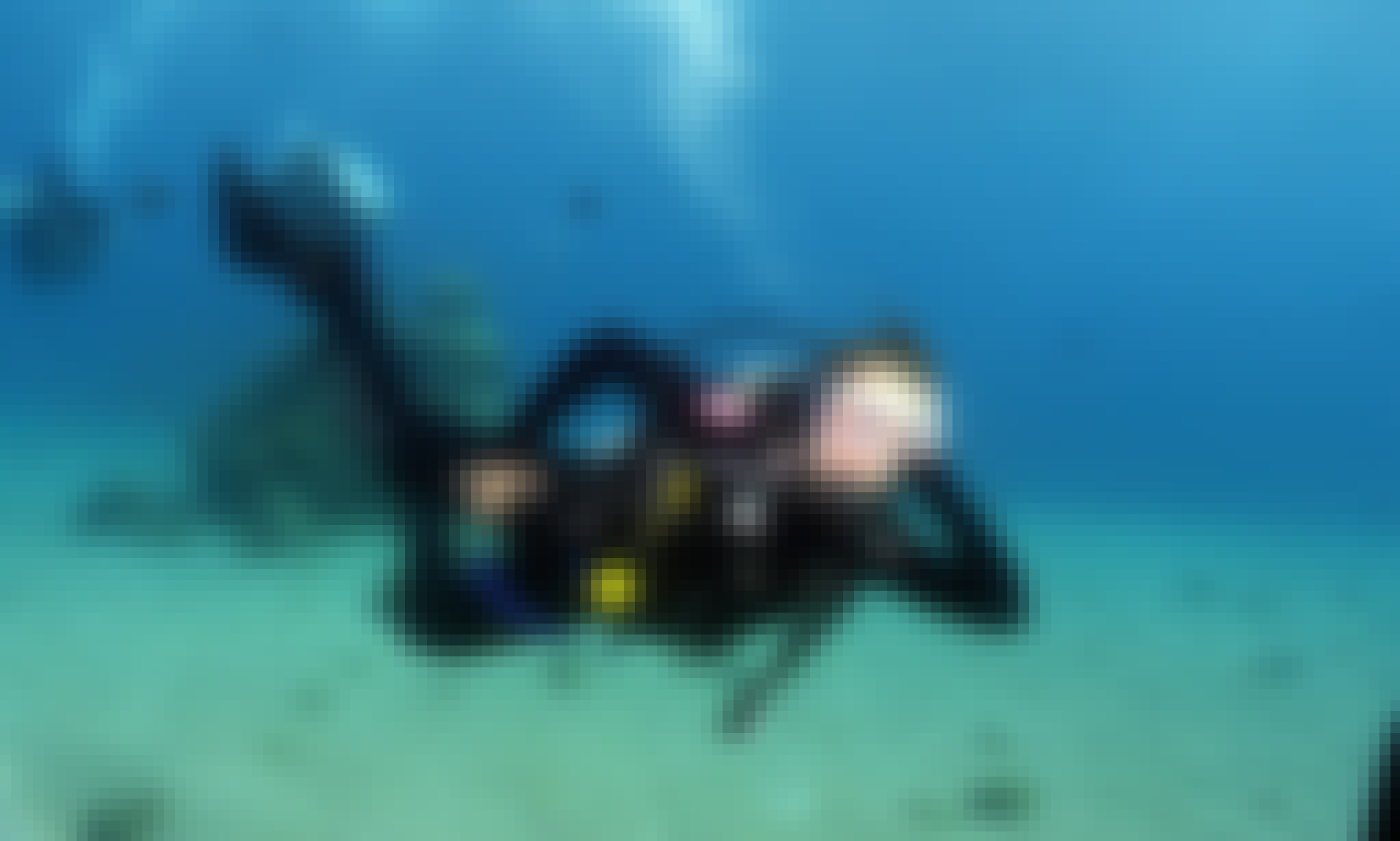 Discover the underwater world with diving in Eilat, Israel