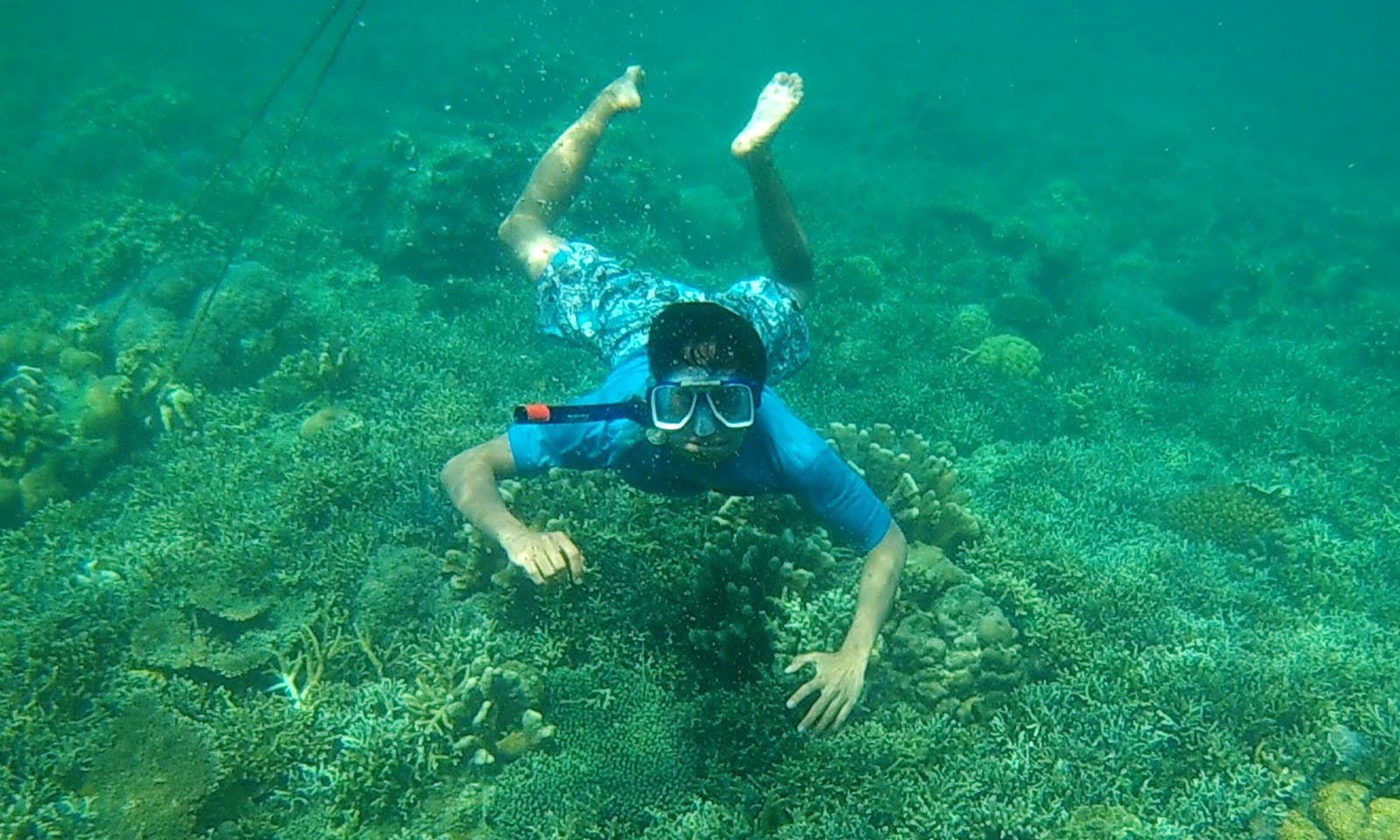 Wonderful opportunity to observe the underwater life in Buleleng, Bali