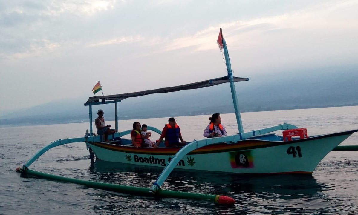 Most amazing dolphin watch experience in Buleleng, Bali