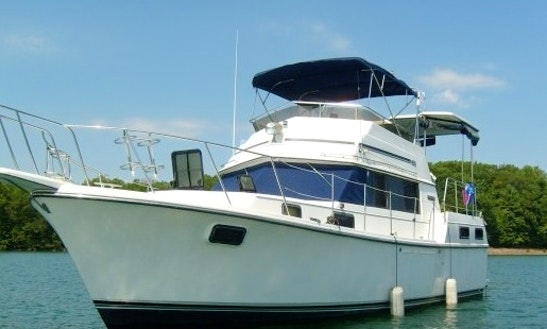 We Have Your Yacht, Captain, Sun And Fun .... Let's Go --- Plus The Sailboat's Included!
