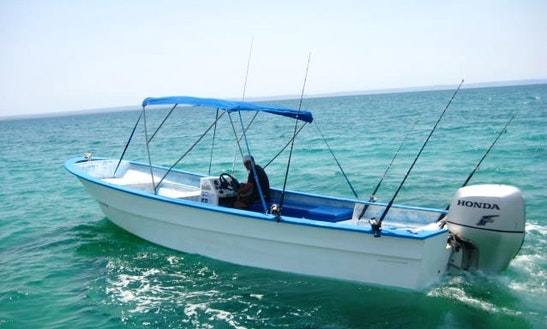 Sport Fishing Charter On Super Pangas In La Paz