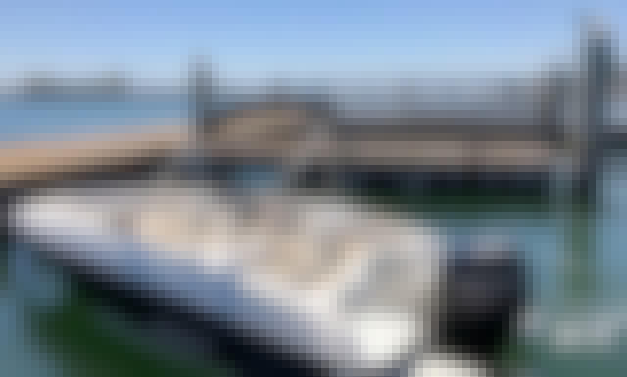 """""""Bayliner Element"""" In San Diego, California"""