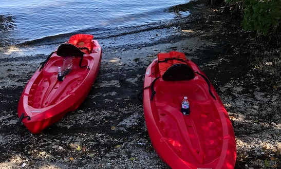 Kayaking In Beautiful Boca Ciega, Cross Bayou And Long Bayou