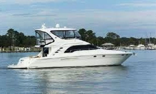 Searay Motor Yacht Rental In Jupiter