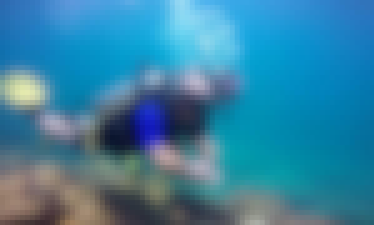 Open Water Diving Trip in Rio de Janeiro, Brazil