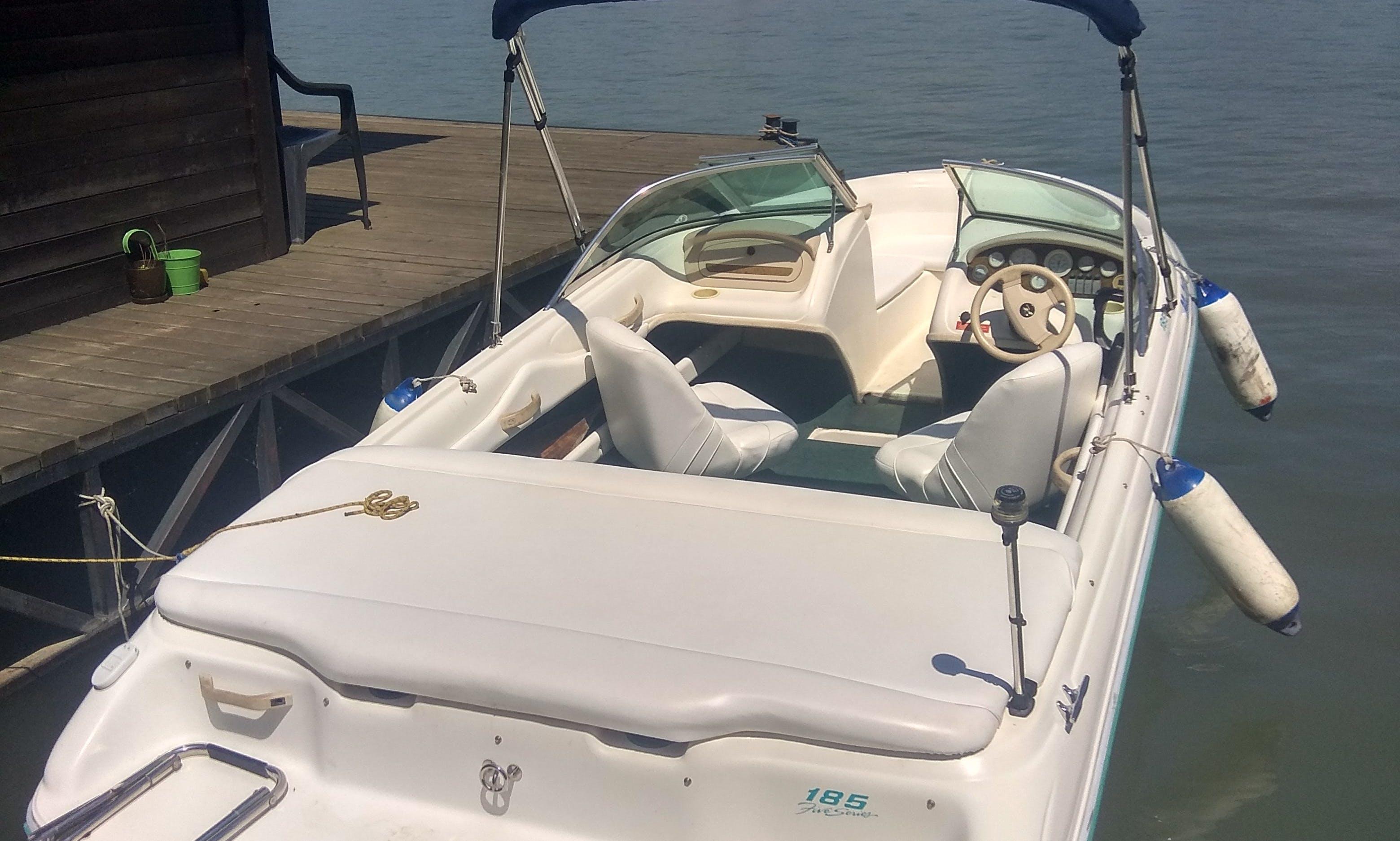 Sea Ray Bow Rider 185 rental in Belgrade