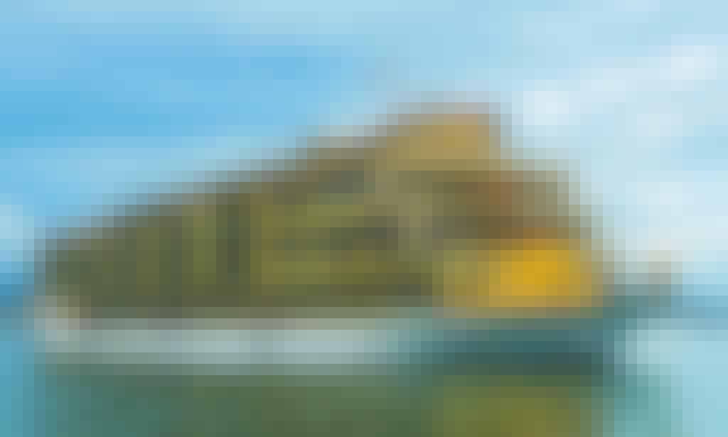 Golden Cruise 9999