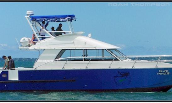 44' Passenger Boat Diving Trips In Savusavu, Fiji