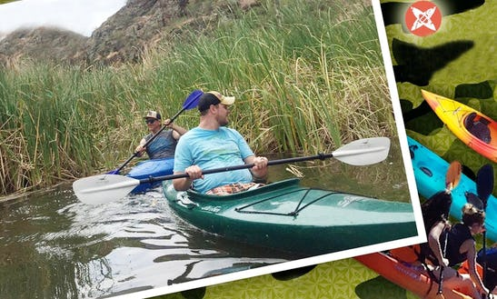 Stand Up Paddleboard Rental With Paddles And Life Jackets In Mesa, Arizona