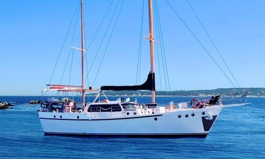 Have Fun Sailing In Drummoyne, New South Wales Aboard Sydneysider Sailing Mega Yacht