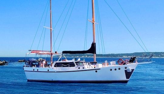 Have Fun Sailing In Drummoyne, New South Wales Aboard Sydneysider Sailing Mega Yacht