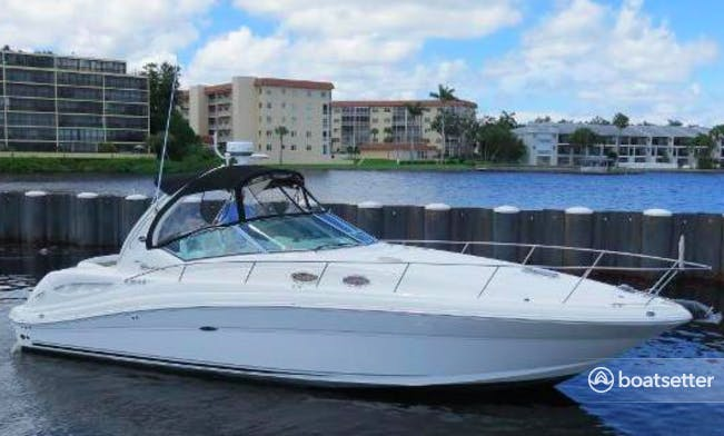 Sea Ray Power Boat rental in Wellington