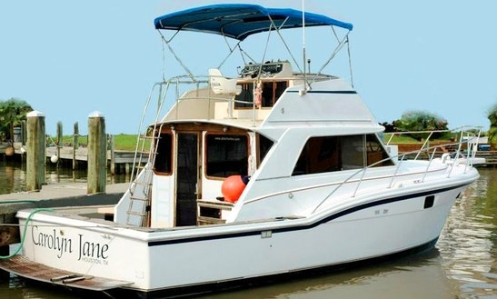 Fishing Adventure In Freeport, Texas On 42' Chris Craft Yacht