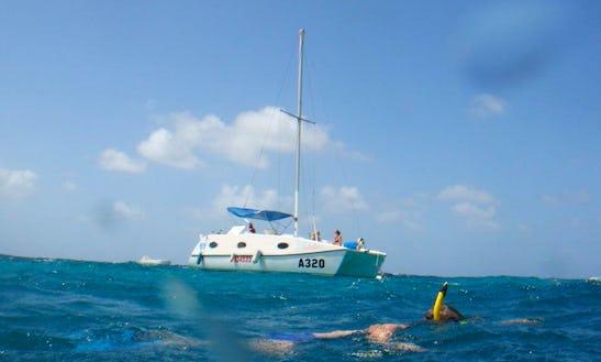 Discover The Magnificent Dive Sites In Oranjestad, Aruba!