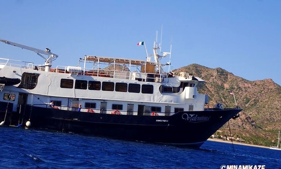 Amazing Diving Tour On M/v Valentina Yacht!