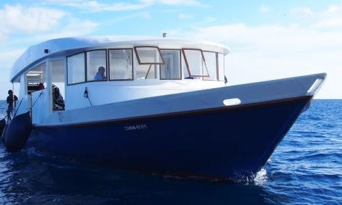 Book M/V Fun Azul II Passenger Boat for Your Scuba Diving Adventure!