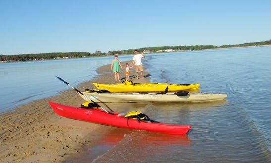 Guided Kayak Trip For 12 People In Cape Charles, Virginia