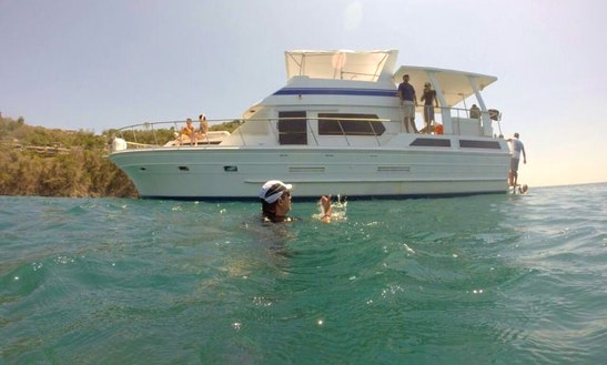 50' Private Party Yacht - $1800 - Beers, Water, Soda, Fruit, & Snacks Included!