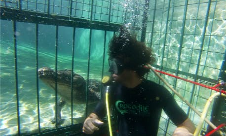 Experience Scuba Dive on a cage in Victoria Falls, Zimbabwe