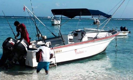 Book a Fishing Adventure in Rivière Noire, Mauritius