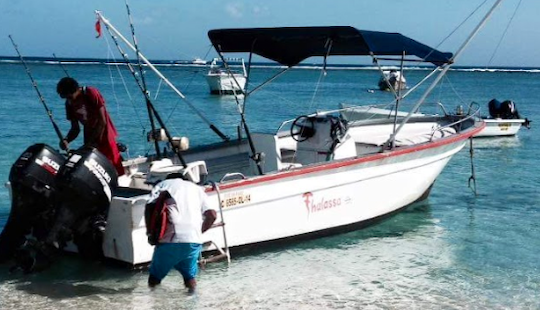 Book A Fishing Adventure In Rivière Noire, Mauritius