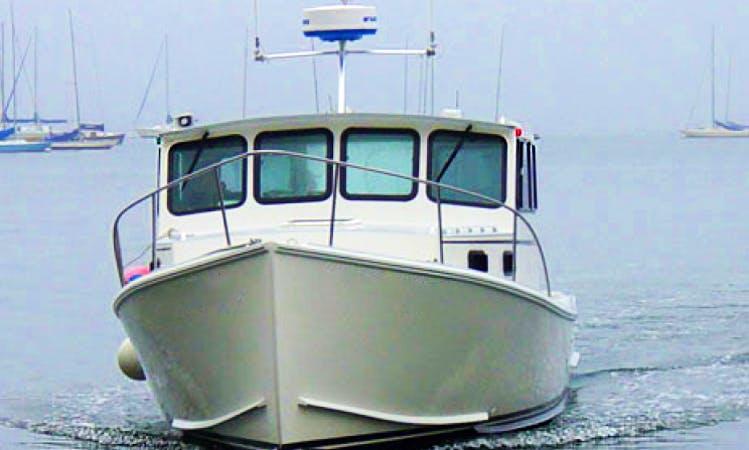 Fishing Charters On 32ft Osmond Beal Yacht In Boston, Massachusetts