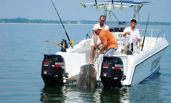 27' Glacier Bay Power Catamaran In Hilton Head Island, South Carolina United States