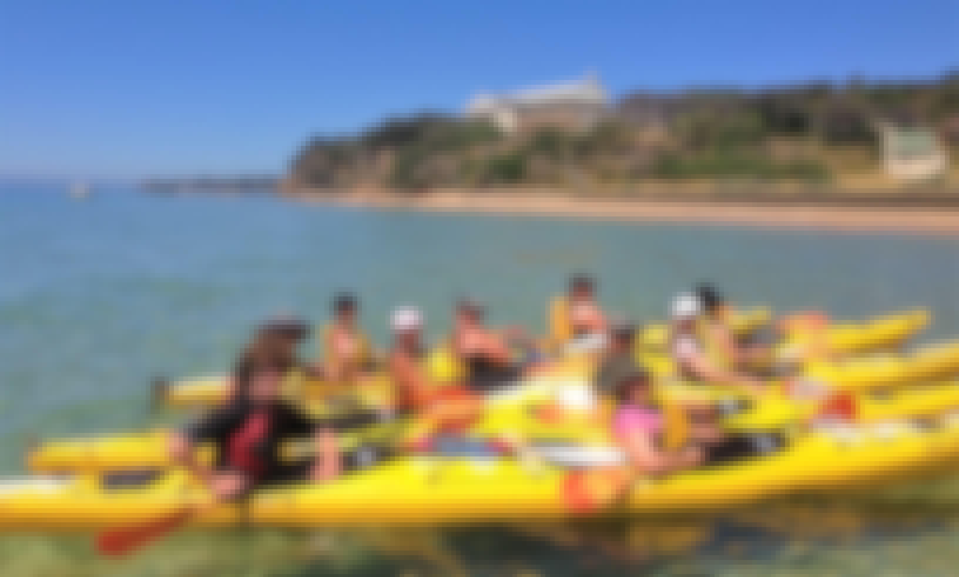 Dolphin Sanctuary Kayak Tour - Portsea Australia