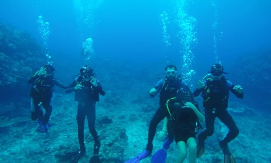 Recreational Scuba Diving Tour In Luganville, Vanuatu