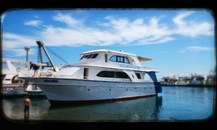 Boat Diving Trips for Adventurous People in Hurghada, Egypt