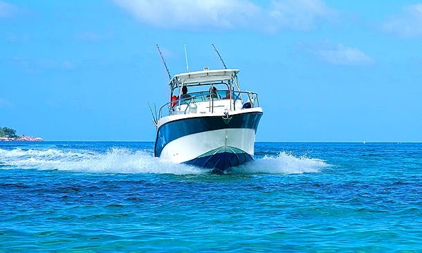 12-Person Cuddy Cabin Boat Tour and Fishing Charter in Praslin, Seychelles