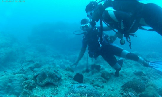 Guided Scuba Diving Tour In Flic En Flac, Mauritius