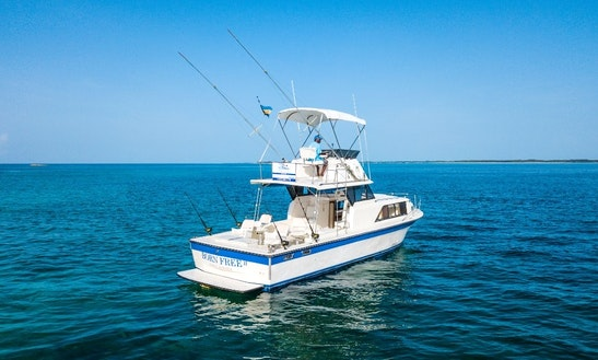 Nassau Fishing Charter For 6 People On 35' Allmand Sportfisher Yacht