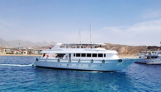 Diving Trip And Padi Courses Offered In Sharm El-sheikh, Egypt
