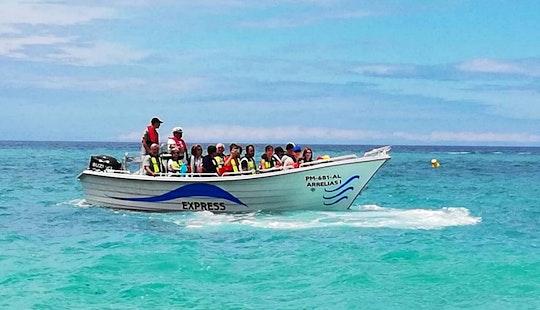 Explore Praia Da Marinha, Portugal On This Amazing Passenger Boat!
