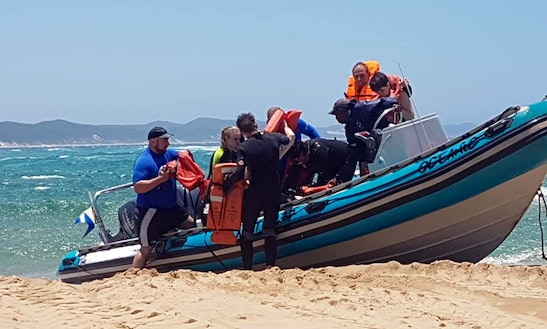 Boat Diving Adventure To Sodwana, Alliwal Shoal And Mozambique
